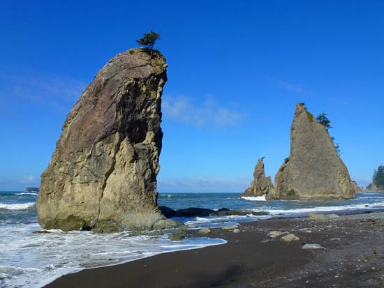 Sea stacks on Rialto Beach